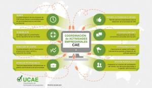 Infografía de ventajas y servicios de la CAE